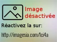 20170110-110031-1-_imagesia-com_1ci4a_large.jpg